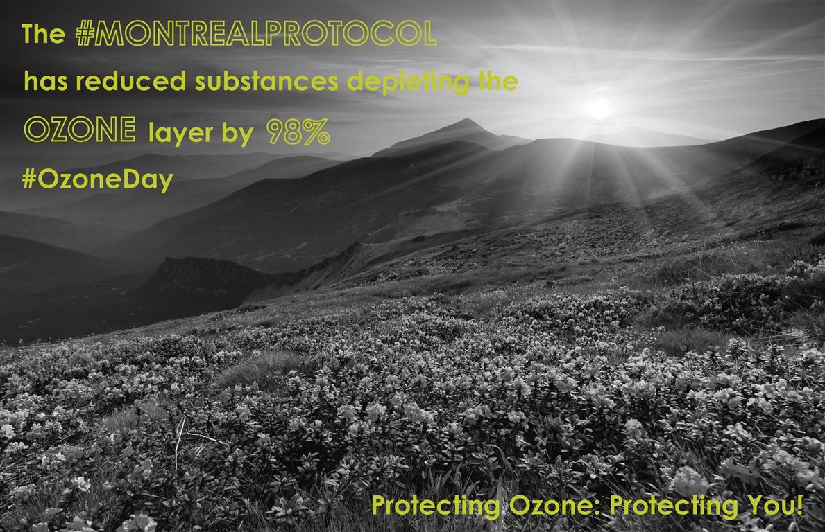 Ozone Day 2014
